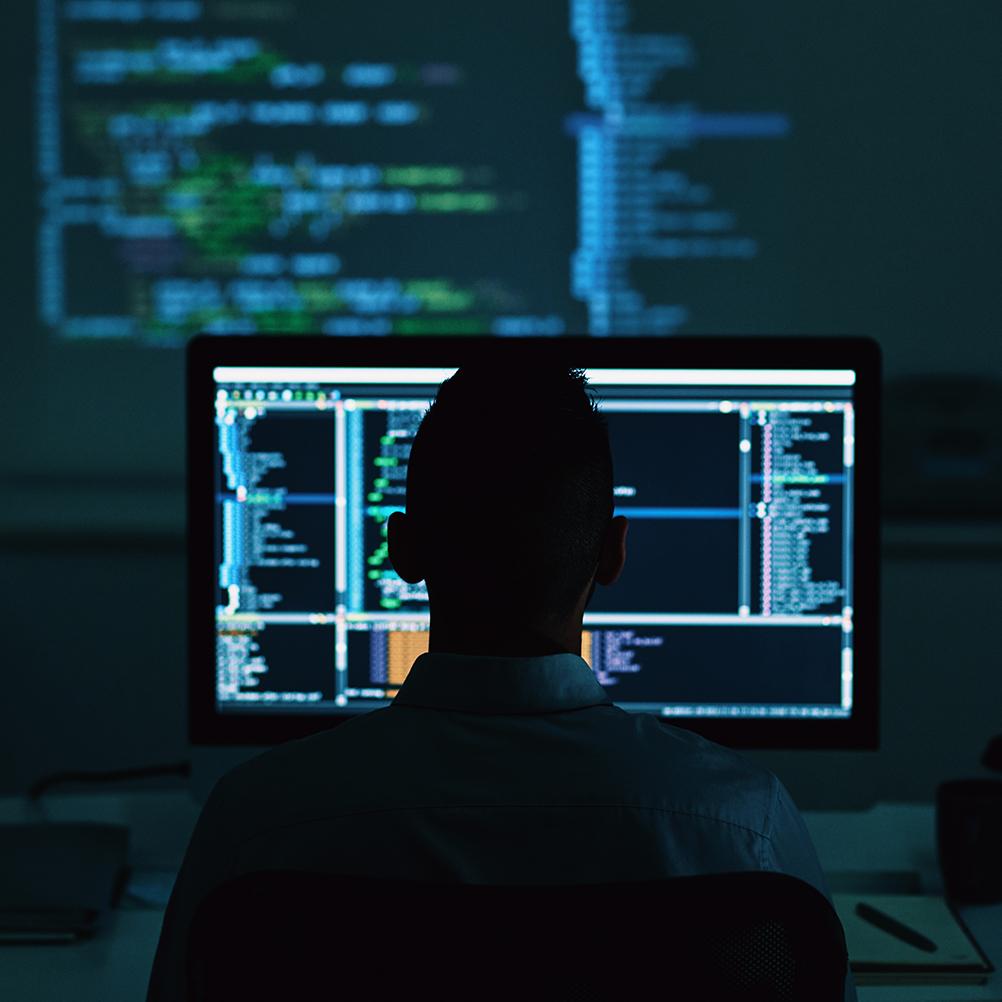 software developer MSM5J6Y